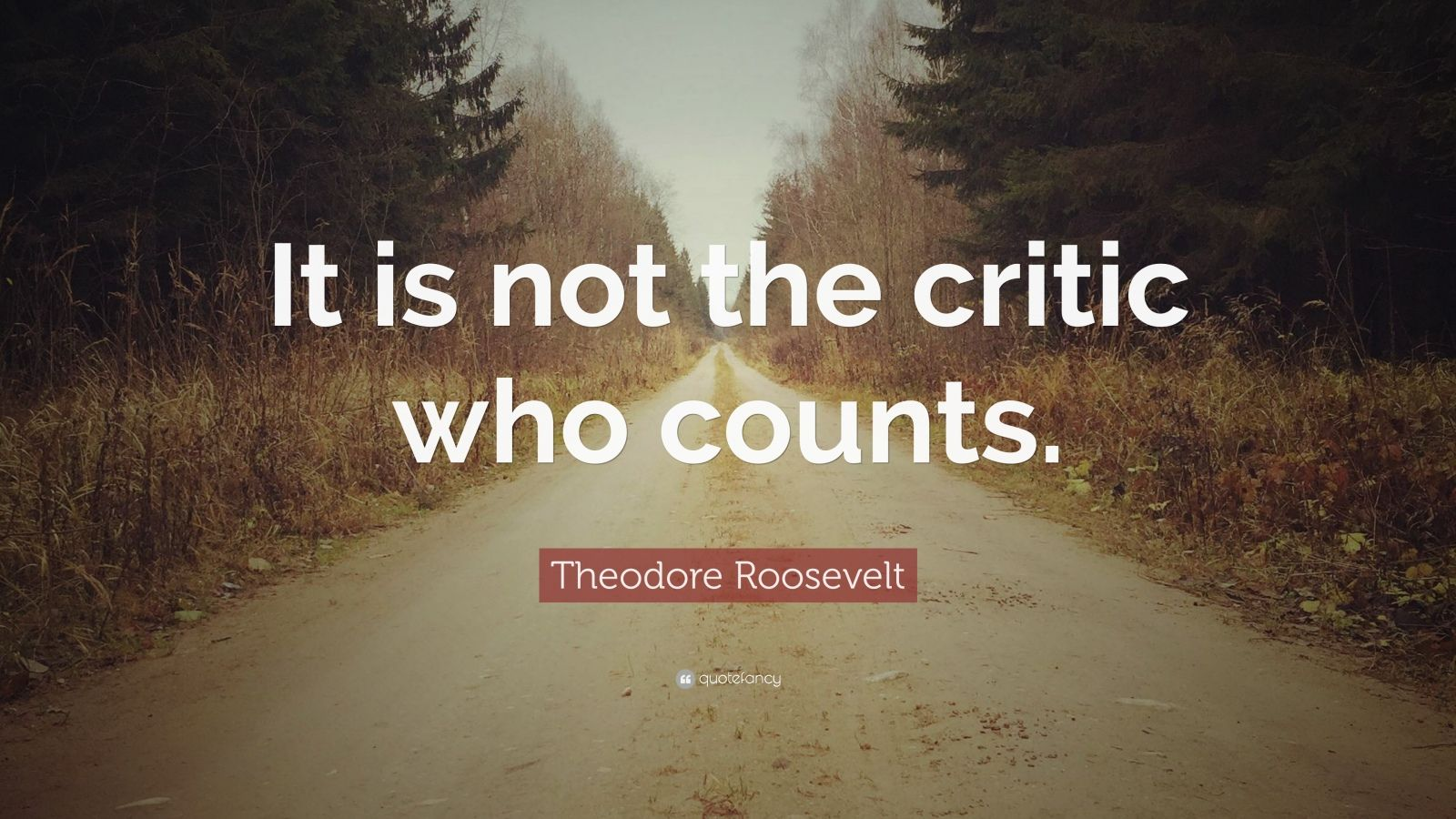 148606-Theodore-Roosevelt-Quote-It-is-not-the-critic-who-counts